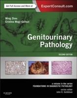 Genitourinary Pathology
