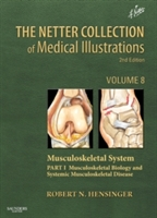 The Netter Collection of Medical Illustrations: Musculoskeletal System: Volume 6, Part III